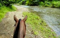 Randonnée de cheval à Manuel Antonio au Costa Rica