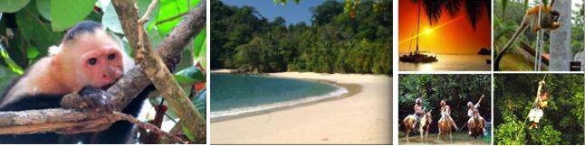 Animaux, plage et activitées au Parc Manuel Antonio