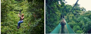 Tyroliennes et ponts suspendus à Monteverde