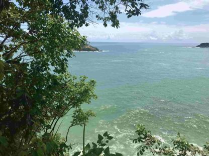 Plage du Parc National de Manuel Antonio dans un circuit au Costa Rica