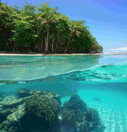 Plage turquoise transparente dans la jungle du Costa Rica