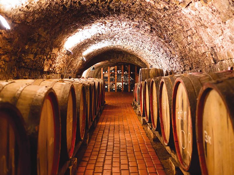 Cave de vins de Porto dans les vignobles en voyage au Portugal